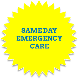 Same Day Emergency Care